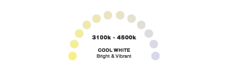 Cool White Lighting Colour Temperature