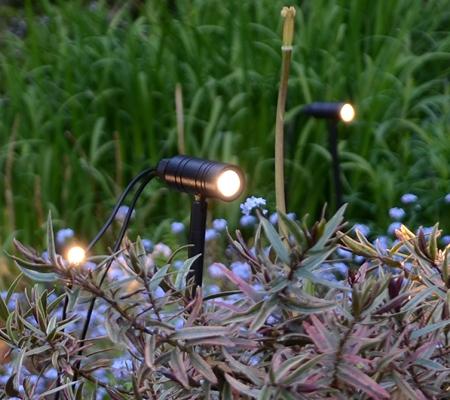 Low Voltage Garden Lighting