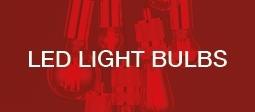 January Clearance - LED Light Bulbs