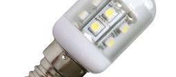 LED Pygmy Bulbs