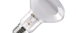 Reflector Light Bulbs