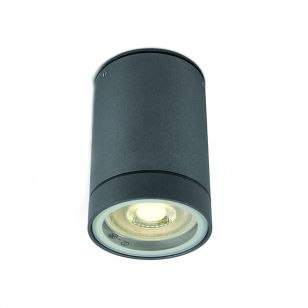 Cylinder Outdoor Flush Ceiling Light - Anthracite