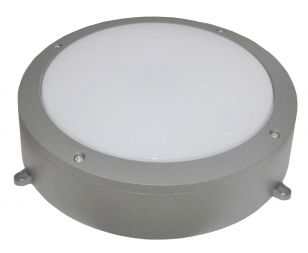 Alum 30W Daylight LED Outdoor Wall Light - Grey