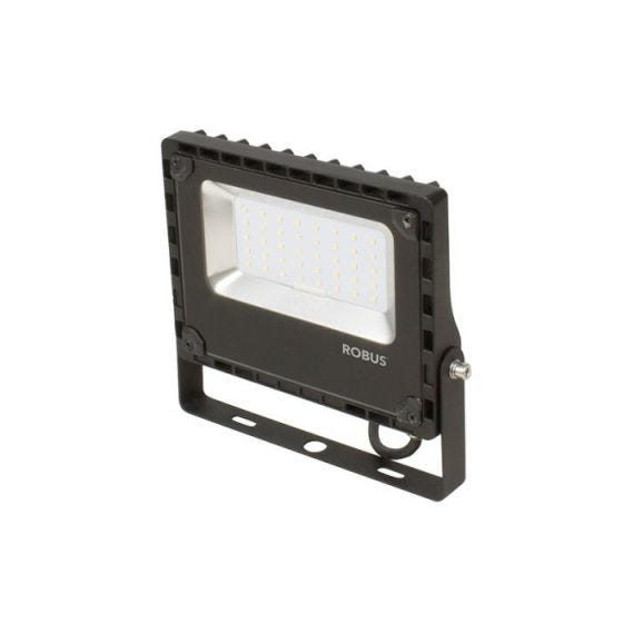 Robus Champion 30W Cool White LED Floodlight - Black