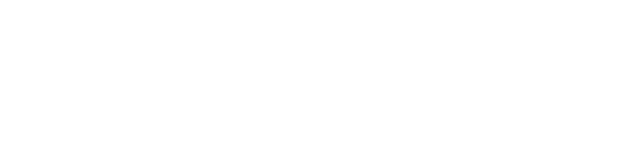 EasyFit Garden Lights